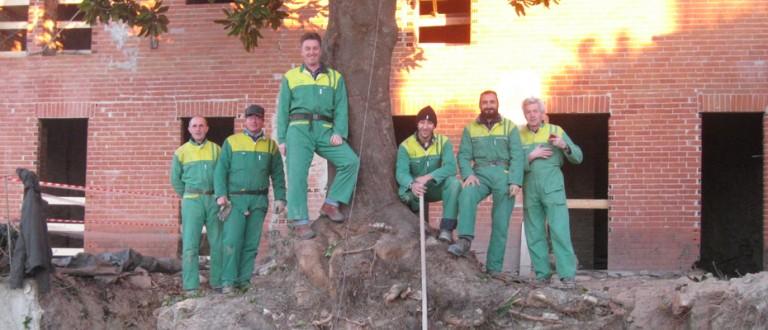 Magnolia Cocconato Team